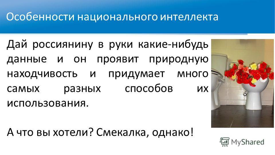 Особенности национального интеллекта Дай россиянину в руки какие-нибудь данные и он проявит природную находчивость и придумает много самых разных способов их использования. А что вы хотели? Смекалка, однако!