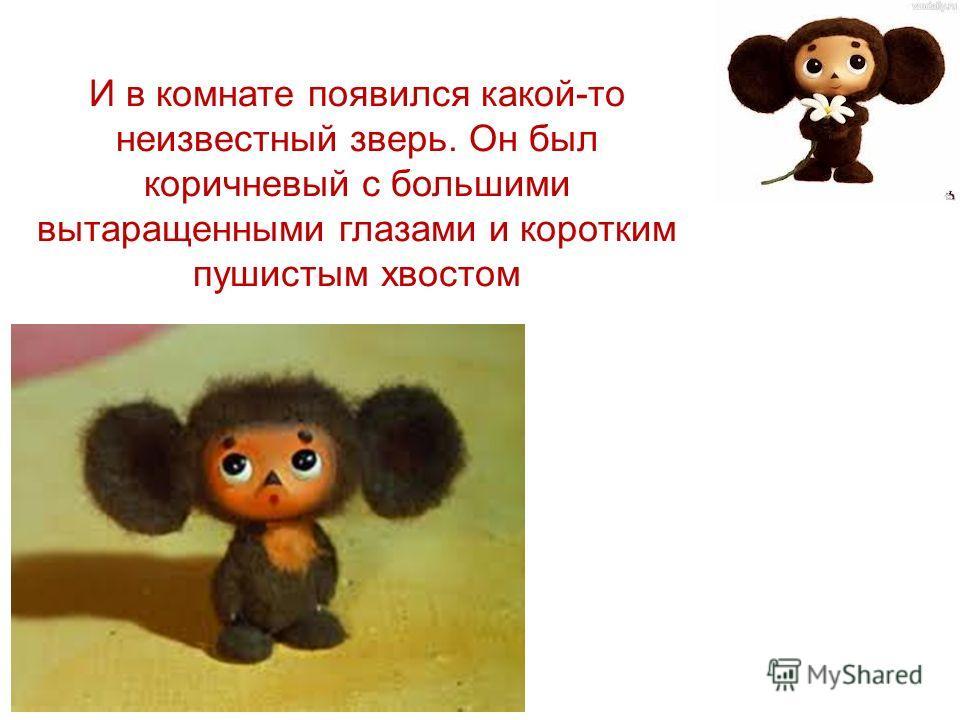 И в комнате появился какой-то неизвестный зверь. Он был коричневый с большими вытаращенными глазами и коротким пушистым хвостом
