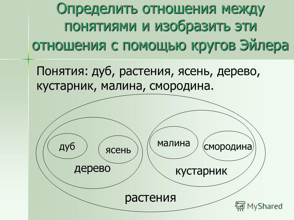 Определить отношения между понятиями и изобразить эти отношения с помощью кругов Эйлера Понятия: дуб, растения, ясень, дерево, кустарник, малина, смородина. растения дерево кустарник дуб ясень малина смородина