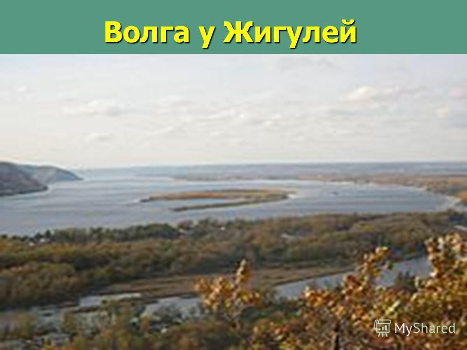 Волга у Жигулей