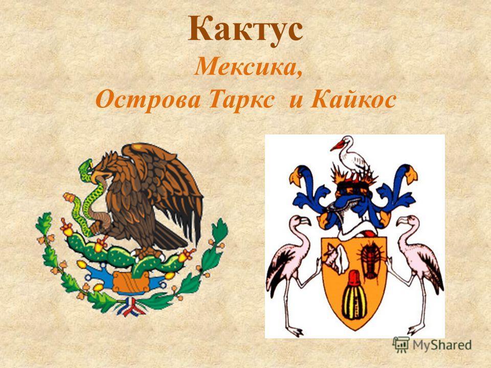 Кактус Мексика, Острова Таркс и Кайкос