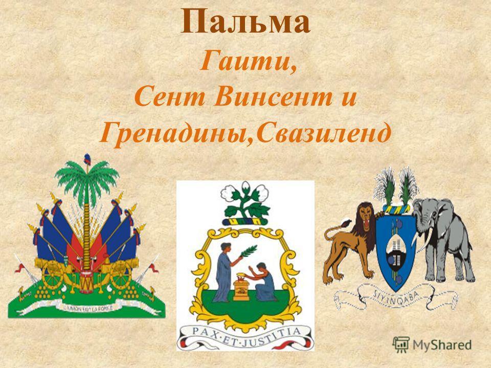 Пальма Гаити, Сент Винсент и Гренадины,Свазиленд