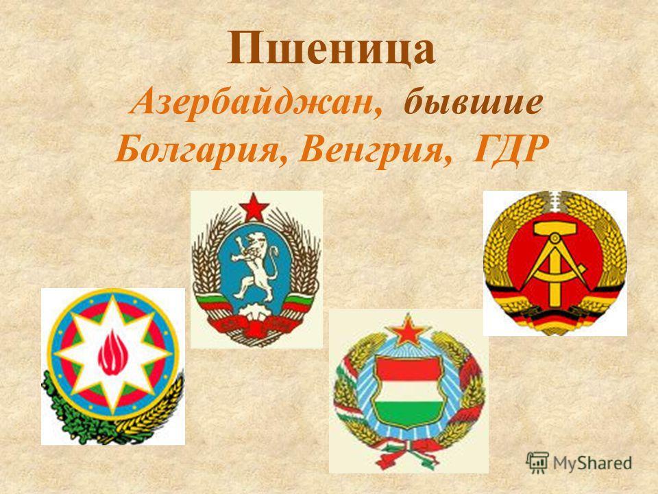 Пшеница Азербайджан, бывшие Болгария, Венгрия, ГДР