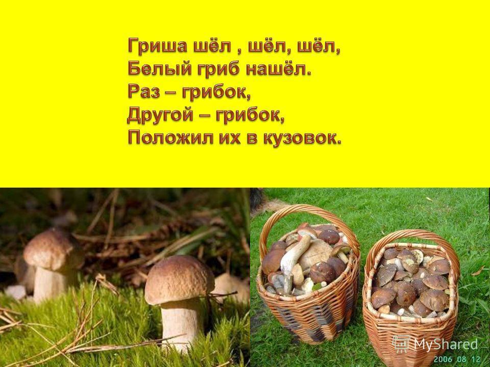 Кто в лесу без топоров строит избу без углов? избу без углов?