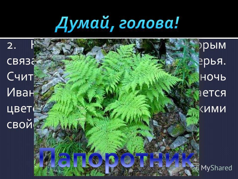 2.Назовите растение, с которым связаны народные поверья. Считалось, что раз в году, в ночь Ивана Купала, на нем распускается цветок, обладающий магическими свойствами.