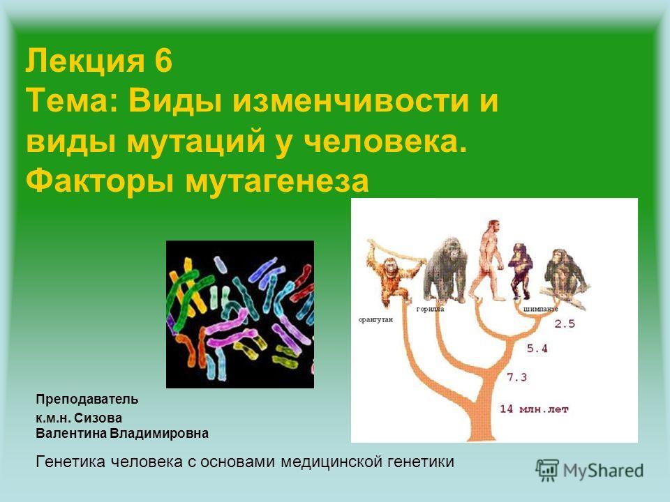 Лекция 6 Тема: Виды изменчивости и виды мутаций у человека. Факторы мутагенеза Преподаватель к.м.н. Сизова Валентина Владимировна Генетика человека с основами медицинской генетики