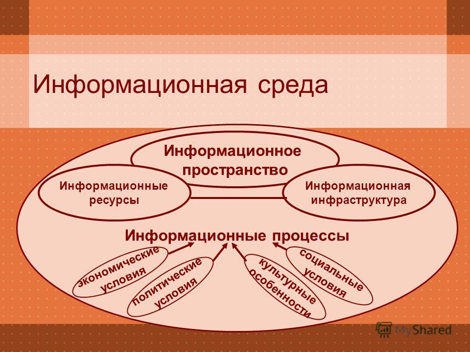 Информационные процессы Информационная среда Информационное пространство экономические условия политические условия социальные условия культурные особенности Информационные ресурсы Информационная инфраструктура