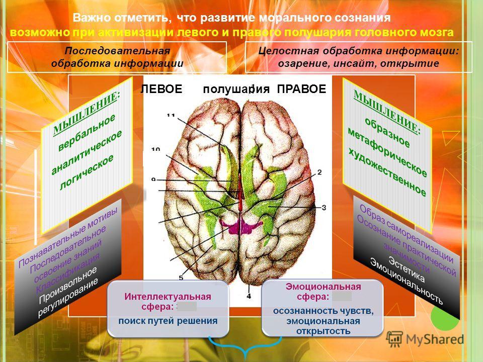ЛЕВОЕ полушария ПРАВОЕ Важно отметить, что развитие морального сознания возможно при активизации левого и правого полушария головного мозга Последовательная обработка информации Целостная обработка информации: озарение, инсайт, открытие