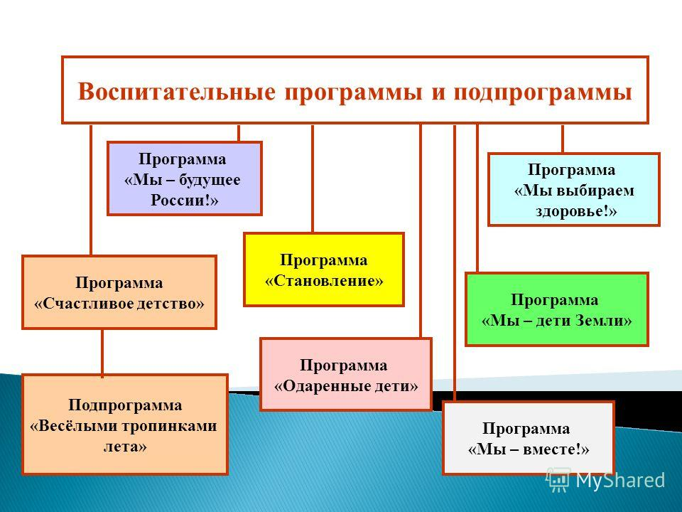 Программа «Одаренные дети» Программа «Мы – будущее России!» Программа «Мы выбираем здоровье!» Программа «Становление» Программа «Счастливое детство» Подпрограмма «Весёлыми тропинками лета» Программа «Мы – дети Земли» Воспитательные программы и подпро