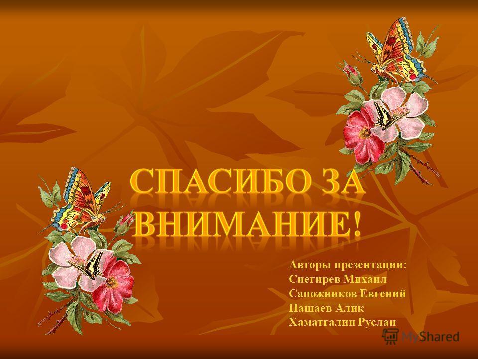 Авторы презентации: Снегирев Михаил Сапожников Евгений Пашаев Алик Хаматгалин Руслан