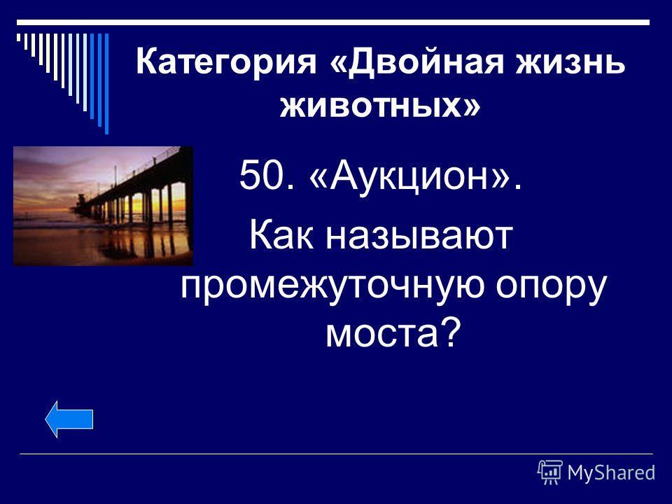 Категория «Двойная жизнь животных» 50. «Аукцион». Как называют промежуточную опору моста?