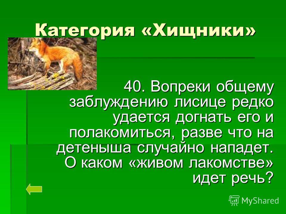 Категория «Хищники» 40. Вопреки общему заблуждению лисице редко удается догнать его и полакомиться, разве что на детеныша случайно нападет. О каком «живом лакомстве» идет речь?