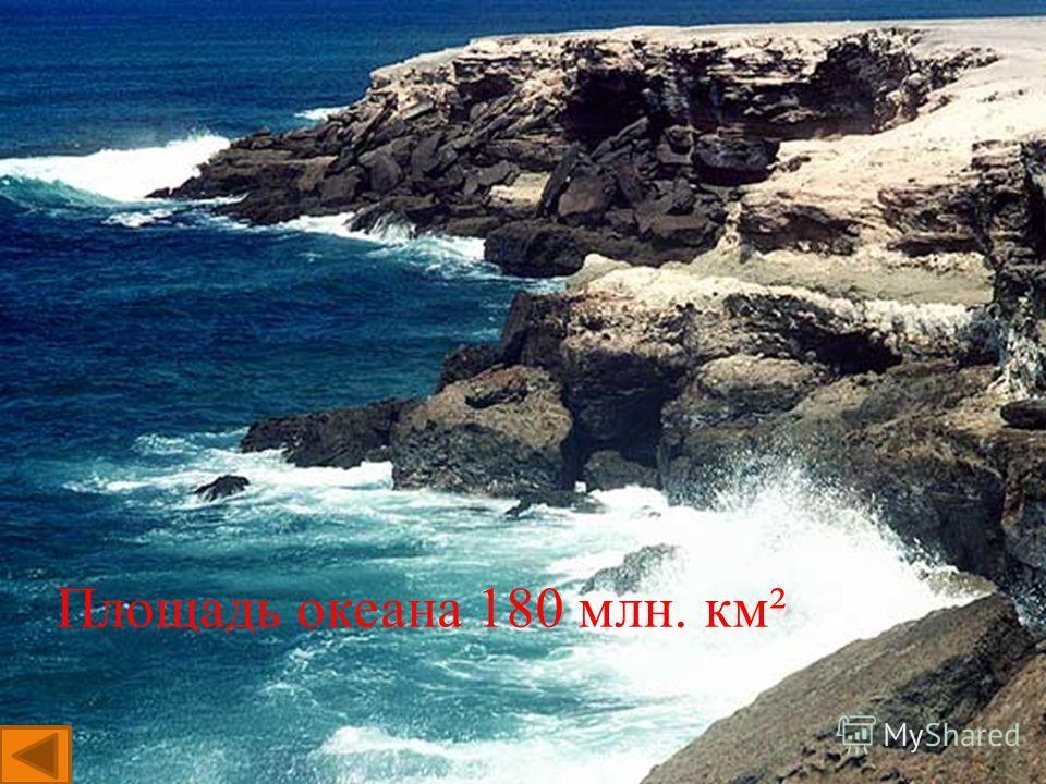 Площадь океана 180 млн. км²