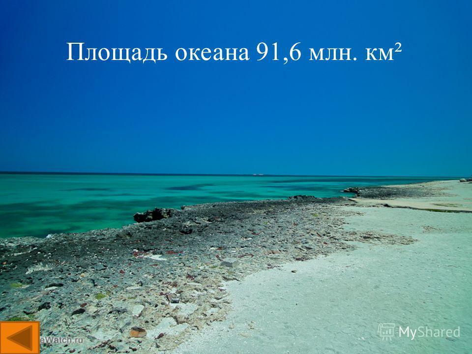 Площадь океана 91,6 млн. км²