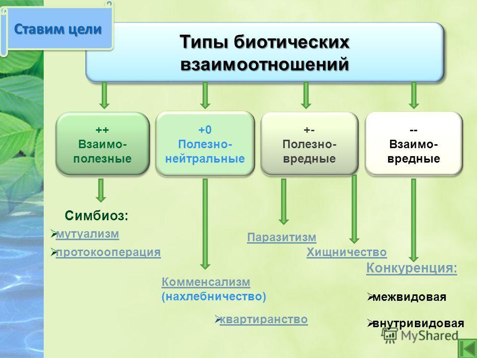 Типы биотических взаимоотношений ++ Взаимо- полезные ++ Взаимо- полезные +0 Полезно- нейтральные +0 Полезно- нейтральные +- Полезно- вредные +- Полезно- вредные -- Взаимо- вредные -- Взаимо- вредные Симбиоз: мутуализм протокооперация Комменсализм (на