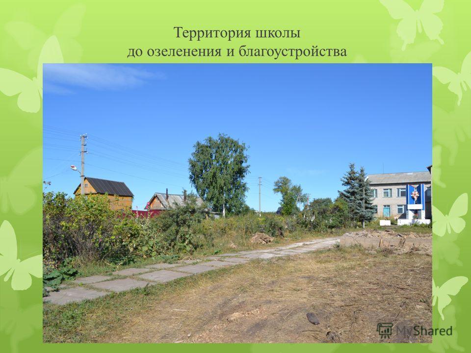 Территория школы до озеленения и благоустройства