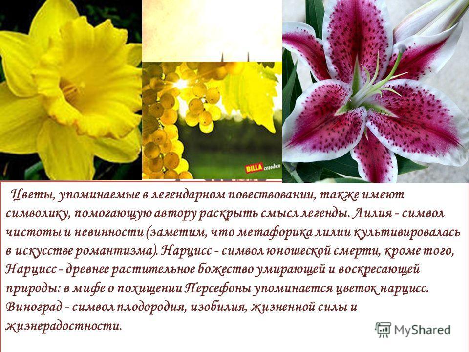 Цветы, упоминаемые в легендарном повествовании, также имеют символику, помогающую автору раскрыть смысл легенды. Лилия - символ чистоты и невинности (заметим, что метафорика лилии культивировалась в искусстве романтизма). Нарцисс - символ юношеской с