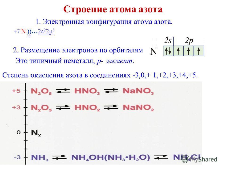 Шнякина О.В. Строение атома азота 1. Электронная конфигурация атома азота. +7 N ))…2s 2 2p 3 25 2. Размещение электронов по орбиталям Это типичный неметалл, p- элемент. Степень окисления азота в соединениях -3,0,+ 1,+2,+3,+4,+5.