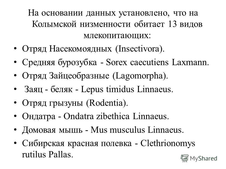 На основании данных установлено, что на Колымской низменности обитает 13 видов млекопитающих: Отряд Насекомоядных (Insectivora). Средняя бурозубка - Sorex caecutiens Laxmann. Отряд Зайцеобразные (Lagomorpha). Заяц - беляк - Lepus timidus Linnaeus. От
