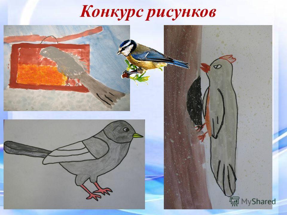 Покормите птиц зимой презентация