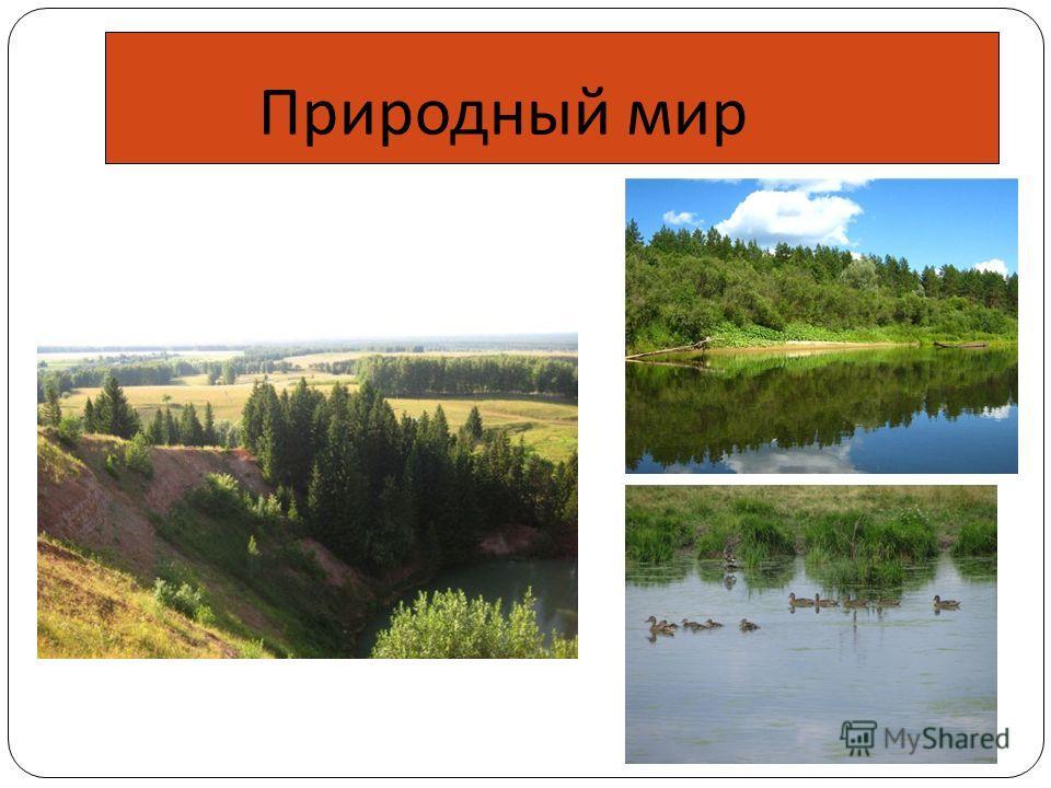 Природный мир
