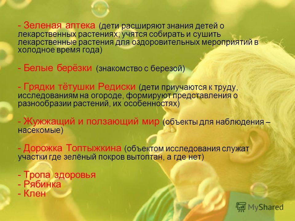 - Зеленая аптека (дети расширяют знания детей о лекарственных растениях; учятся собирать и сушить лекарственные растения для оздоровительных мероприятий в холодное время года) - Белые берёзки (знакомство с березой) - Грядки тётушки Редиски (дети приу