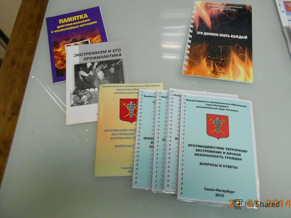 Муниципальное образование Пискарёвка 26
