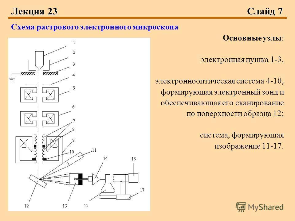 Лекция 23Слайд 7 Схема растрового электронного микроскопа Основные узлы: электронная пушка 1-3, электроннооптическая система 4-10, формирующая электронный зонд и обеспечивающая его сканирование по поверхности образца 12; система, формирующая изображе