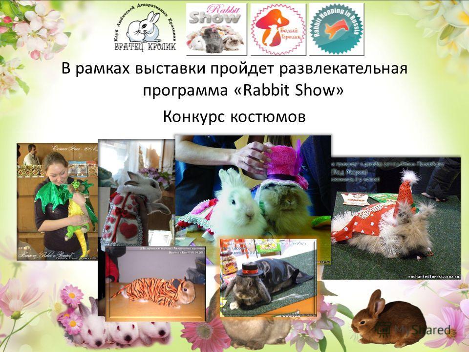 В рамках выставки пройдет развлекательная программа «Rabbit Show» Конкурс костюмов