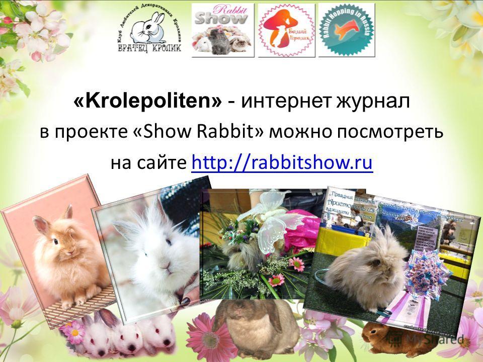 «Krolepoliten» - интернет журнал в проекте «Show Rabbit» можно посмотреть на сайте http://rabbitshow.ruhttp://rabbitshow.ru