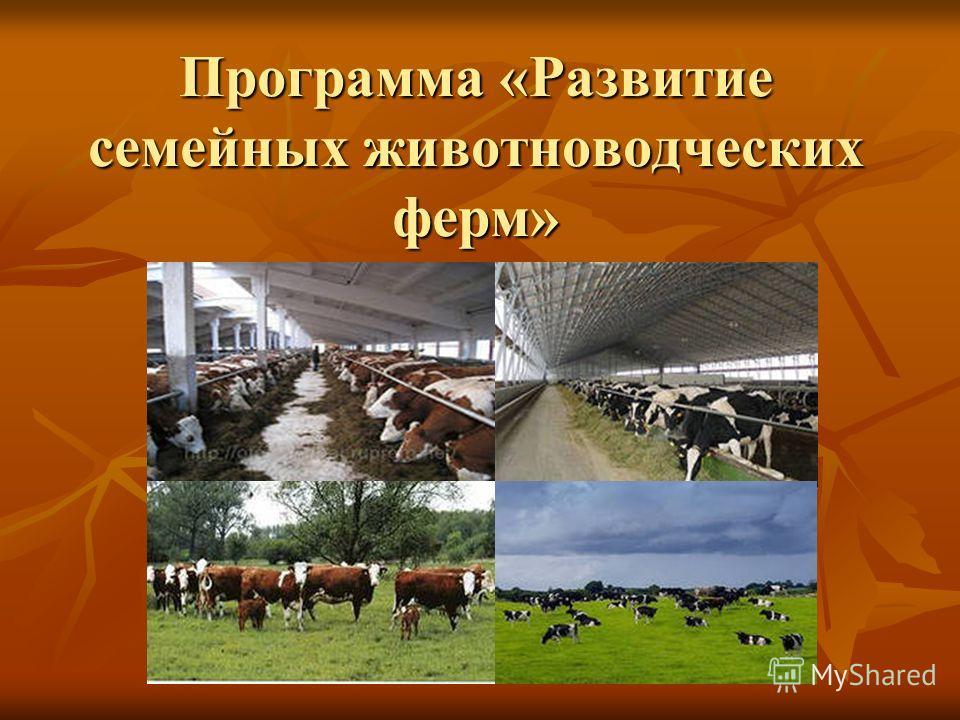 Программа «Развитие семейных животноводческих ферм»