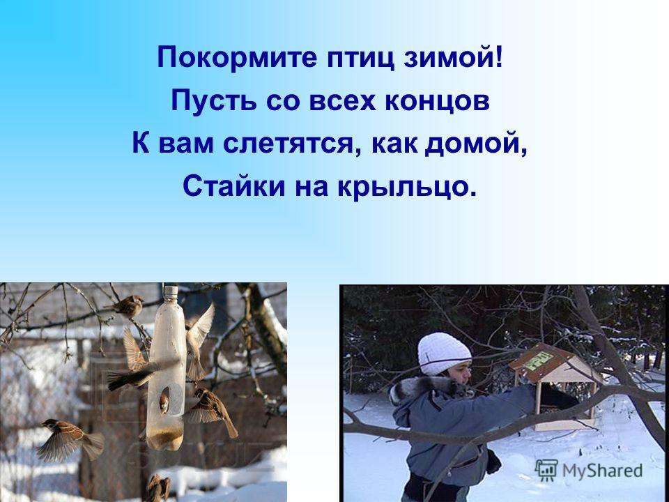 Покормите птиц зимой! Пусть со всех концов К вам слетятся, как домой, Стайки на крыльцо.