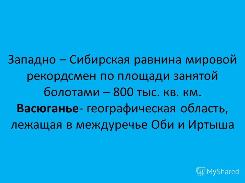 Западно – Сибирская равнина мировой рекордсмен по площади занятой болотами – 800 тыс. кв. км. Васюганье- географическая область, лежащая в междуречье Оби и Иртыша