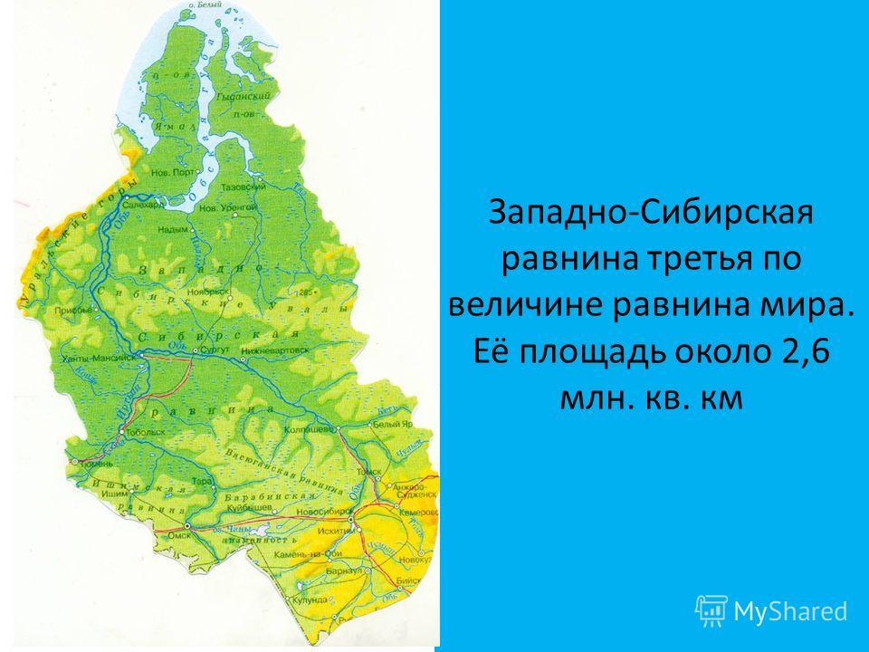 Западно-Сибирская равнина третья по величине равнина мира. Её площадь около 2,6 млн. кв. км