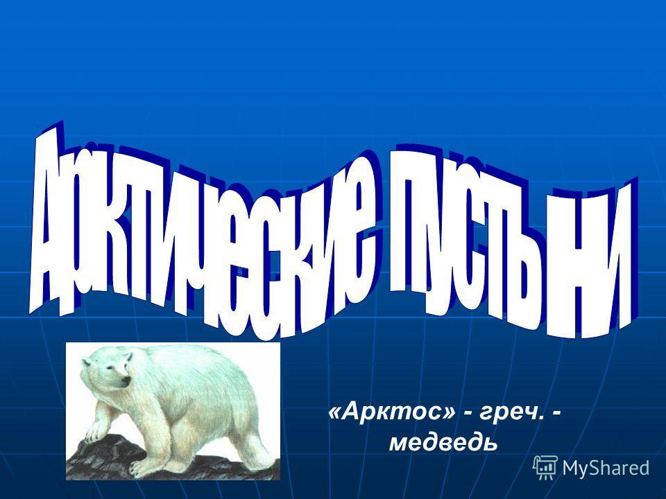 «Арктос» - греч. - медведь