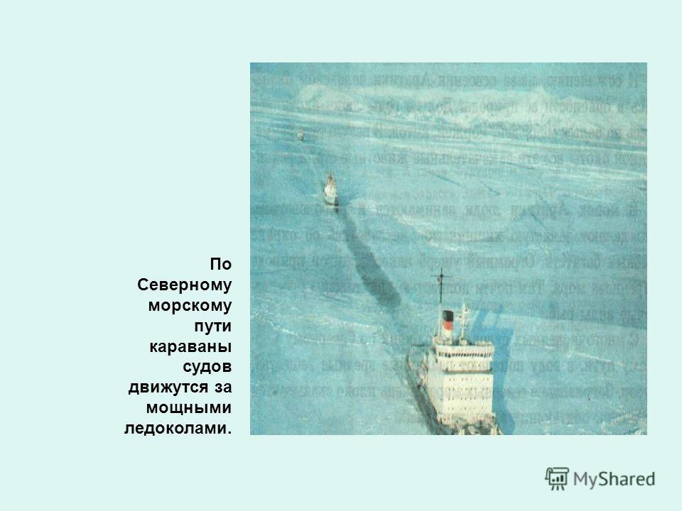По Северному морскому пути караваны судов движутся за мощными ледоколами.