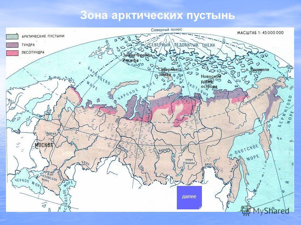 Зона арктических пустынь Новосиби рские острова о. Врангеля Земля Франца- Иосифа Северная Земля далее