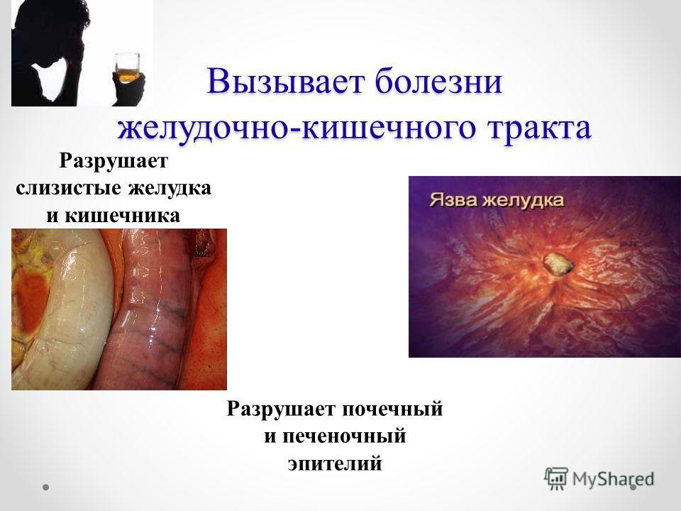 Вызывает болезни желудочно-кишечного тракта Разрушает слизистые желудка и кишечника Разрушает почечный и печеночный эпителий