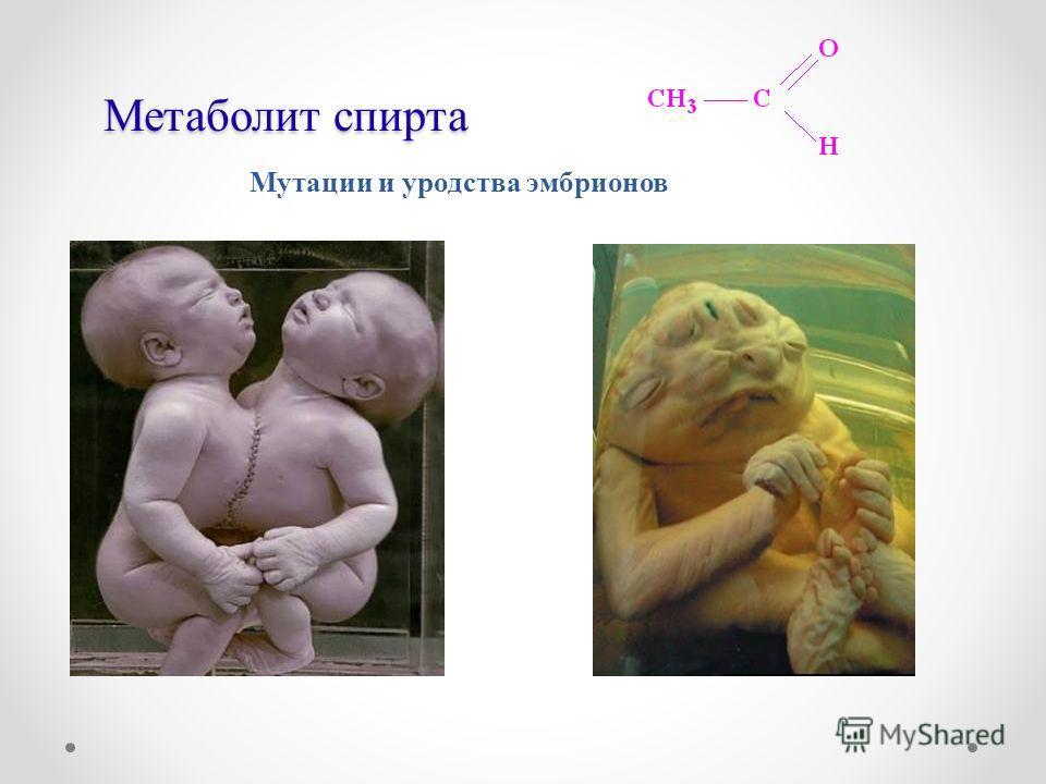 Метаболит спирта Мутации и уродства эмбрионов