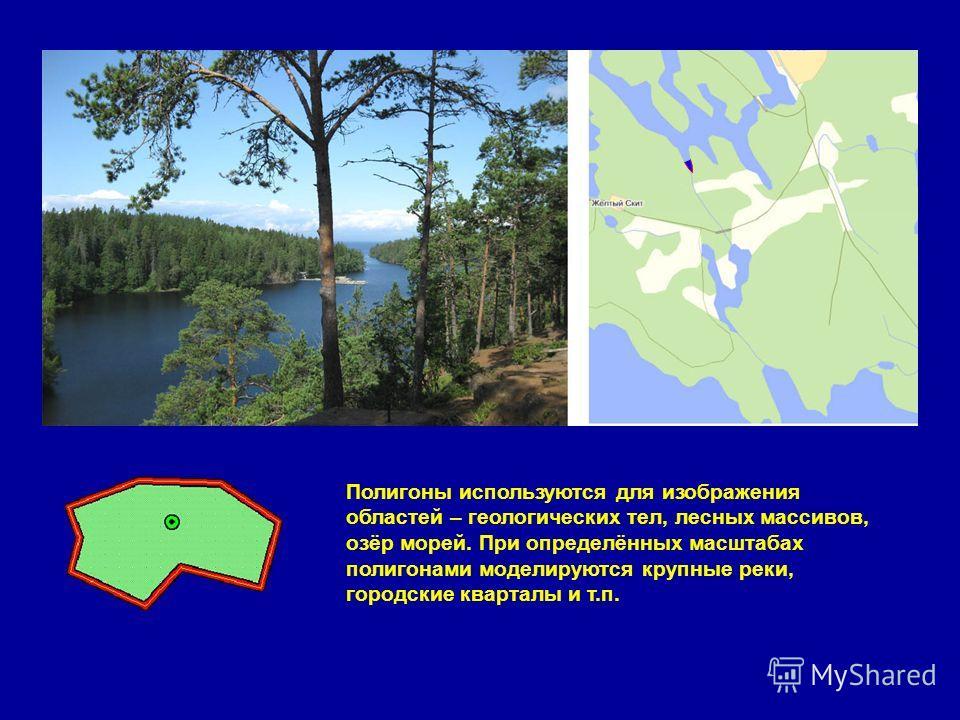 Полигоны используются для изображения областей – геологических тел, лесных массивов, озёр морей. При определённых масштабах полигонами моделируются крупные реки, городские кварталы и т.п.