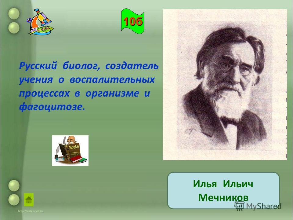 Русский биолог, создатель учения о воспалительных процессах в организме и фагоцитозе. Илья Ильич Мечников 10б