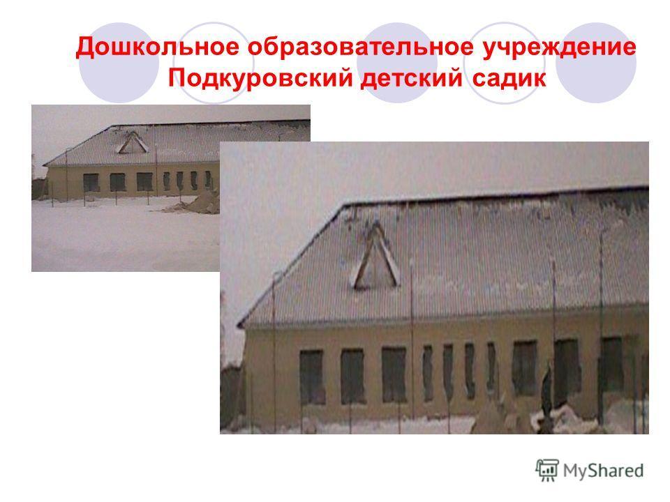Дошкольное образовательное учреждение Подкуровский детский садик
