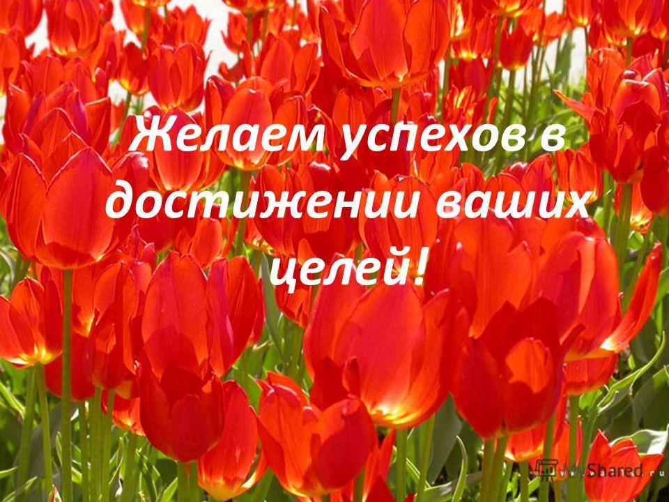 Желаем успехов в достижении ваших целей!