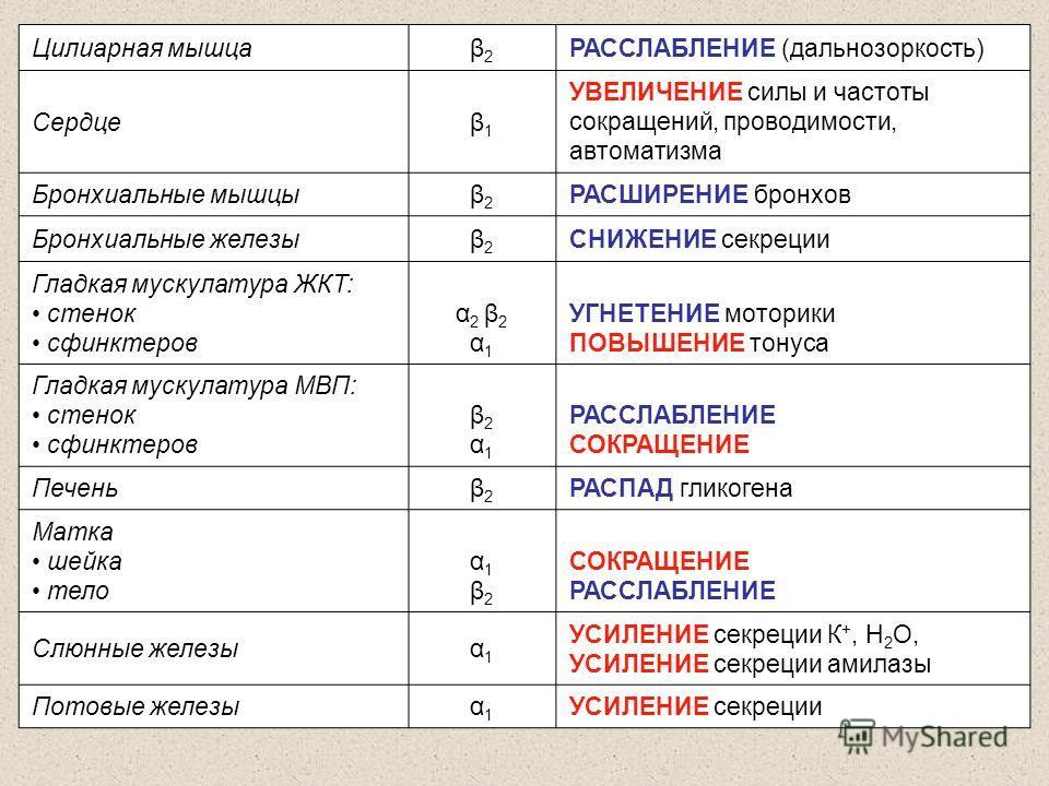 Цилиарная мышцаβ2β2 РАССЛАБЛЕНИЕ (дальнозоркость) Сердцеβ1β1 УВЕЛИЧЕНИЕ силы и частоты сокращений, проводимости, автоматизма Бронхиальные мышцыβ2β2 РАСШИРЕНИЕ бронхов Бронхиальные железыβ2β2 СНИЖЕНИЕ секреции Гладкая мускулатура ЖКТ: стенок сфинктеро