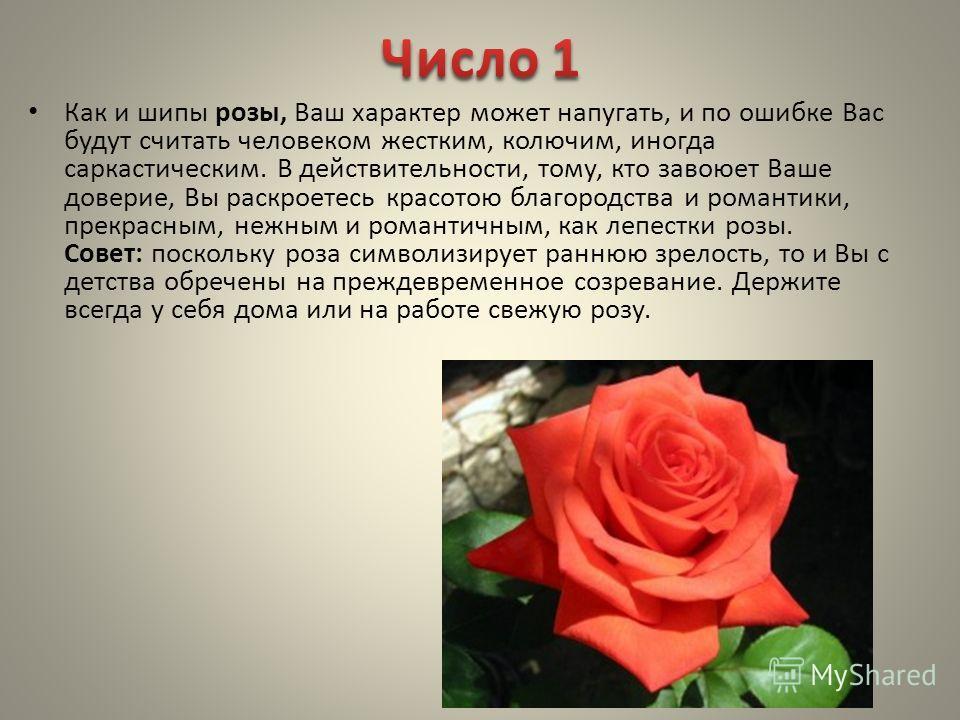Как и шипы розы, Ваш характер может напугать, и по ошибке Вас будут считать человеком жестким, колючим, иногда саркастическим. В действительности, тому, кто завоюет Ваше доверие, Вы раскроетесь красотою благородства и романтики, прекрасным, нежным и