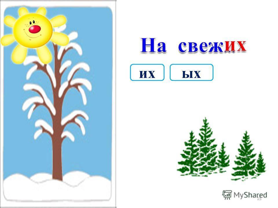 ойым 14