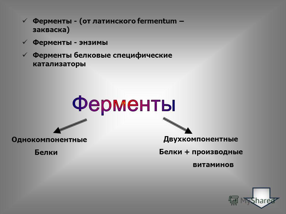 Ферменты - (от латинского fermentum – закваска) Ферменты - энзимы Ферменты белковые специфические катализаторы Однокомпонентные Белки Двухкомпонентные Белки + производные витаминов