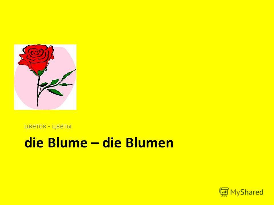 die Blume – die Blumen цветок - цветы