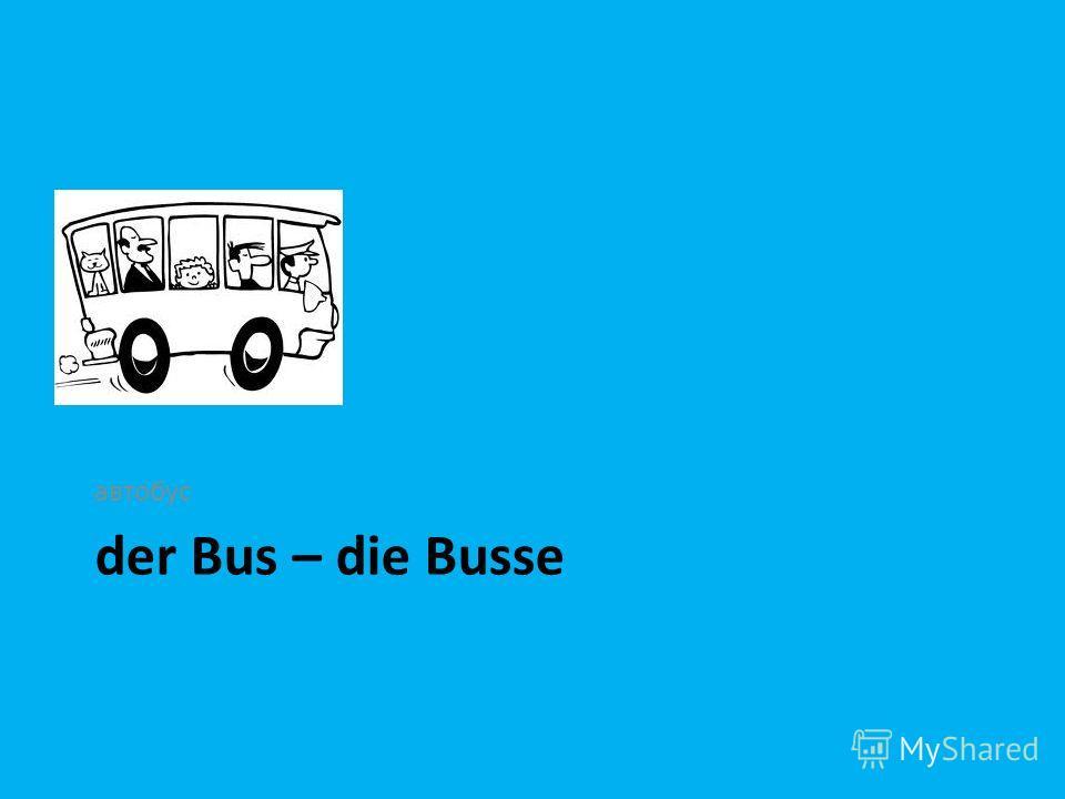 der Bus – die Busse автобус