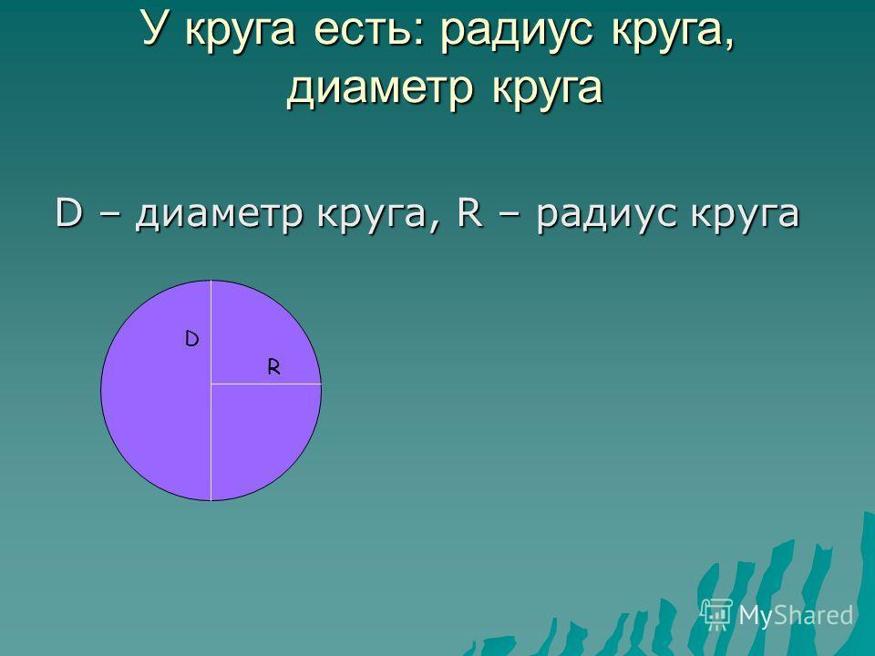 У круга есть: радиус круга, диаметр круга D – диаметр круга, R – радиус круга D R